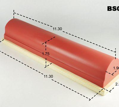 BS011
