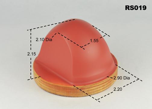 RS019